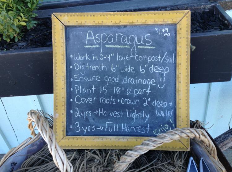 AsparagusSign-MundaneMonday